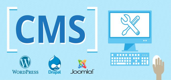 CMS Web Development Services & Customization