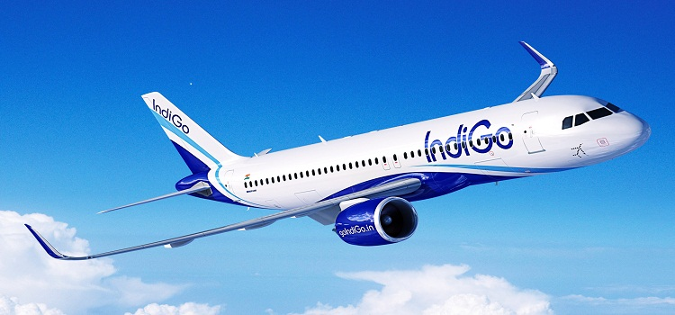a case about indigo airlines